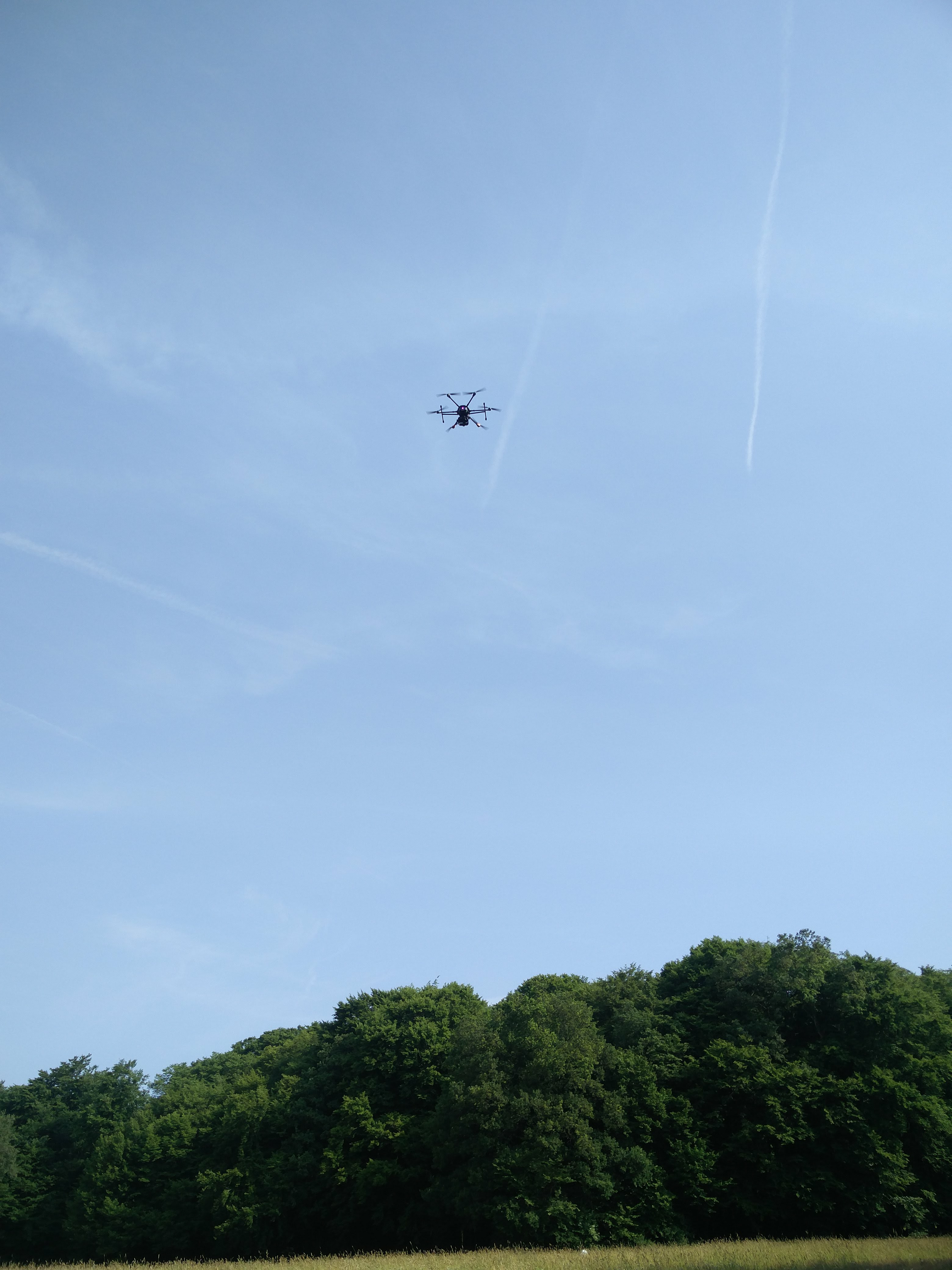 Drohne auf Kitzsuche