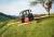 Abmähen einer Graswiese mit Mähbalken