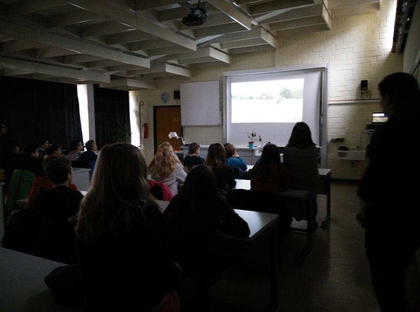 Arbeit in der Klasse: Video über die Thematik