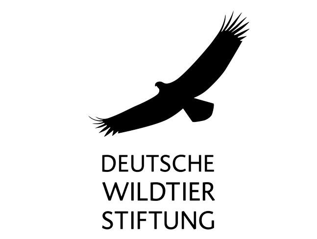 Beitragsbild_Wildtierstiftung