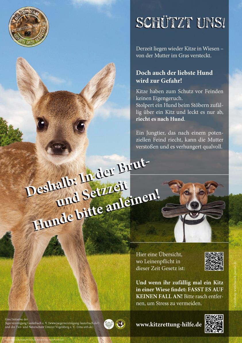 Plakat A3 Hunde anleinen Vorschau